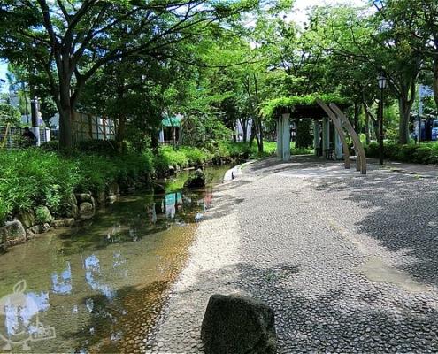 中川近くの水遊び場