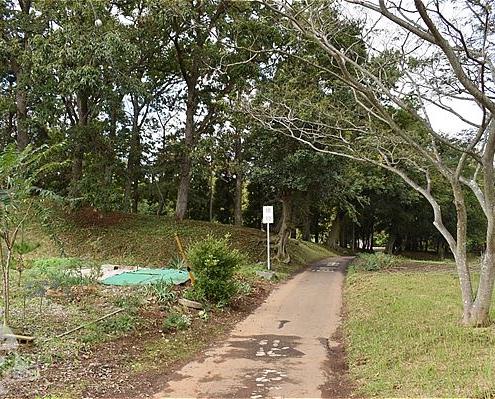 【北園森林公園】入口(東側)