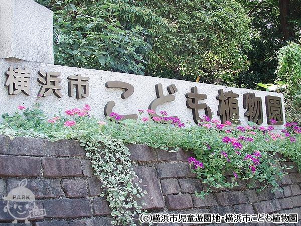 横浜市こども植物園入口