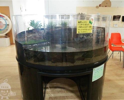 ドーナツ型の水槽