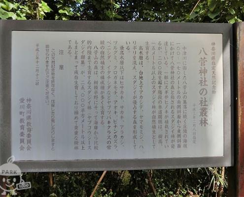 八菅神社の社叢林の解説