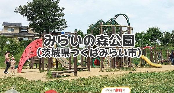 みらいの森公園